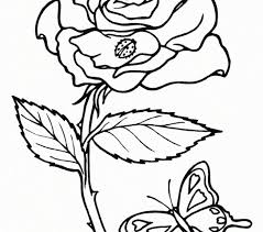 rose picture colouring kids coloring europe travel guides