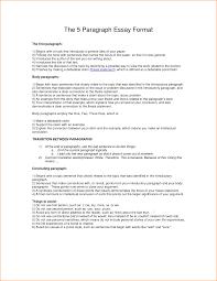 essay format sample 3 paragraph essay template dalarcon com five paragraph essay format worksheet coursework help