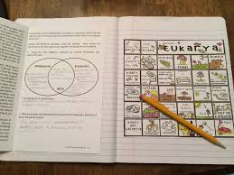 six kingdoms of life interactive notebook puzzle life science