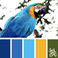 pantone 2017 color trends 30 color palettes inspired by the pantone spring 2017 color trends