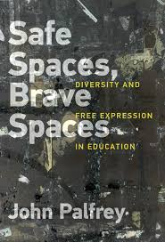safe spaces brave spaces the mit press