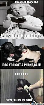 Dog Phone Meme - hello may i talk to dog by ben meme center