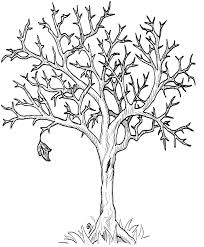 fall tree that because season coloring pages coloring pages