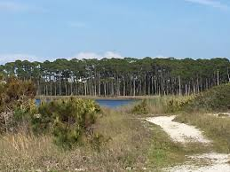 Al S Firewood North Bay by Grayton Beach State Park Fl Top Tips Before You Go With Photos