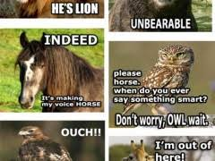 Animal Pun Meme - animal pun meme weknowmemes