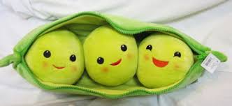 3 peas in a pod tradcatknight 3 peas in a pod mundabor z neo sspx