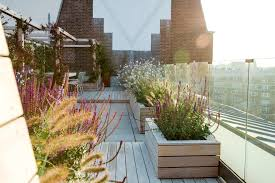 london planter box ideas landscape modern with decking outdoor