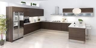 Modern Kitchen Cabinet Colors Cabinet Kitchen Modern Design Livingurbanscape Org