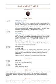 painter resume samples visualcv resume samples database