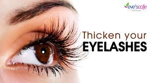 Does Vaseline Help Eyelashes Grow Grow Thicker Eyelashes Naturally Video Dailymotion