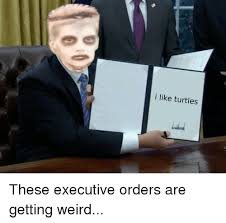I Like Turtles Meme - i like turtles these executive orders are getting weird politics