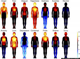 pain body 20 sources of pain in the body that are directly linked to each