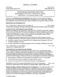Catchy Resume Templates Catchy Resume Titles Catchy Resume Titles Hirescore Catchy