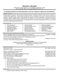 Examples Of Summaries For Resumes by Plumber Resume Example