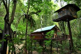 5 tree house hotels asia travel and leisure guides for hotels