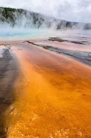 yellowstone national park u2014 the greatest american road trip