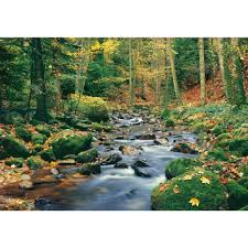 ideal decor 100 in x 144 in forest stream wall mural dm278 the forest stream wall mural dm278 the home depot