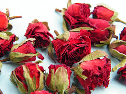 dried roses dried buds bright jpg