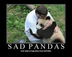 Funny Sad Meme - lol funny meme sad panda