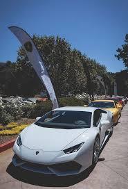 exotic cars lined up lamborghini huracan lined up for a run автомобиль lamborghini