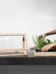 atelier 2 designs miniature greenhouse for indoor gardeners