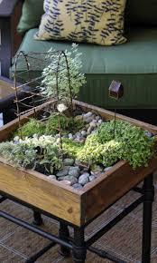 26 best herb garden images on pinterest fairies garden herb