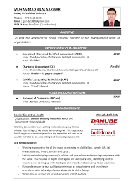 cv of professional accountant