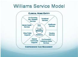 dhs williams consent decree implementation plan