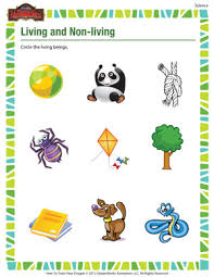 living living u2013 free science worksheet 1st grade kids