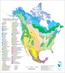 North America Continent Map by 70 Maps That Explain America Vox
