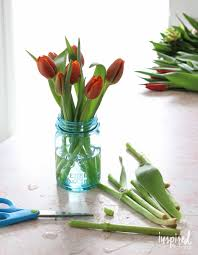 arranging tulips inspired by charm