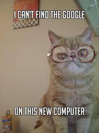 Computer Grandma Meme - the best of grandma cat meme 15 pics