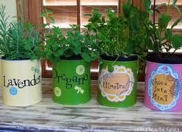 Indoor Herb Garden Kit Garden Design Garden Design With Indoor Herb Garden Kit Home