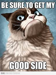 Good Grumpy Cat Meme - be sure to get my good side funny grumpy cat meme picture