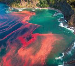 Fenomena Alam Menakjubkan