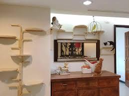 stylish contemporary cat furniture u2014 contemporary