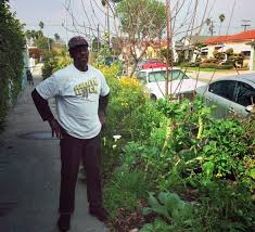 no more citations for curbside veggies in los angeles ted blog