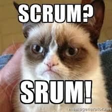 Grump Cat Meme Generator - scrum srum grumpy cat developer meme developer memes