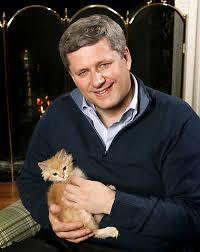 Annoying Childhood Friend Meme - annoying childhood friend meme looks like stephen harper forum