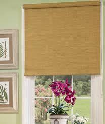 Curtain Shade Woven Shade Woven Window Shades Woven Shades Woven Window Shade