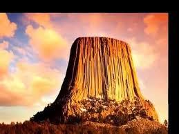 petrified tree stumps maybe