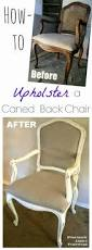 how to reupholster dining room chairs best 25 cane back chairs ideas on pinterest diy furniture