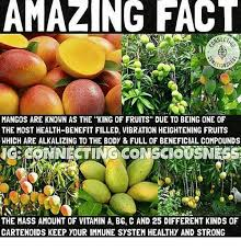 Different Kinds Of Memes - amazing fact mangos are known as the king of fruits due to being