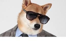 Create Doge Meme - create meme evil doge evil doge doge doge meme pictures