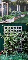 21 easy diy garden trellis u0026 vertical growing structures garden