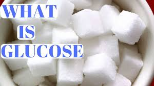 glucose cuisine what is glucose and why is it important