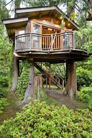 three house tree houses family backyard series kidspace interiors