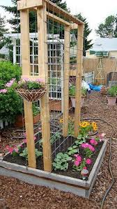 Patio And Garden Ideas 99 Best Patio And Garden Or Fixing The Damage 2 Great Danes Made