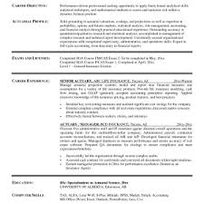 sle of resume word document cover letter sle resume word document free sle resume word
