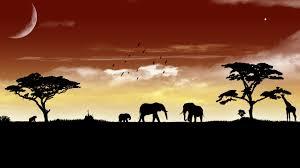 african animal silhouette wallpaper
